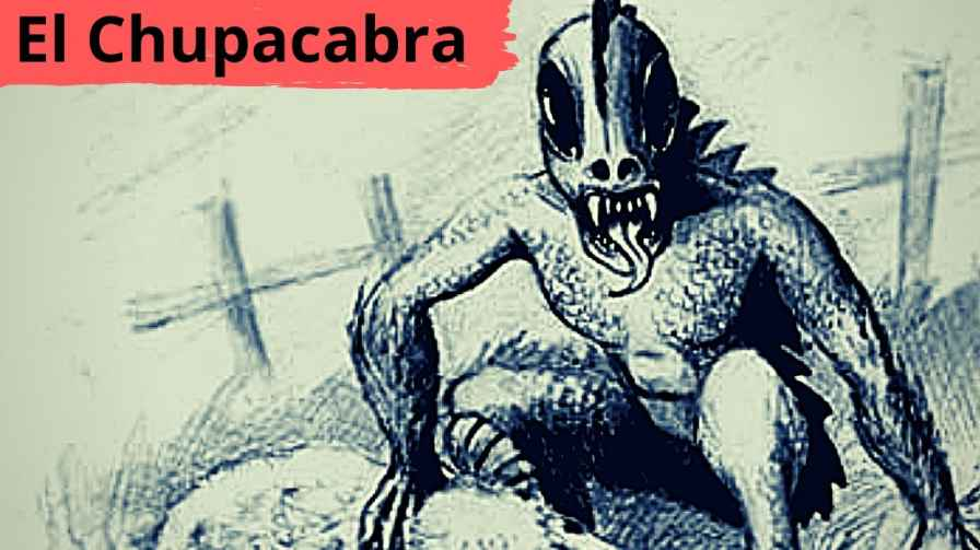 Mystery Monster El Chupacabra In Manipur Explanation